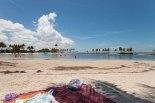 The Lagoon at Matheson Hammock in Miami, Florida